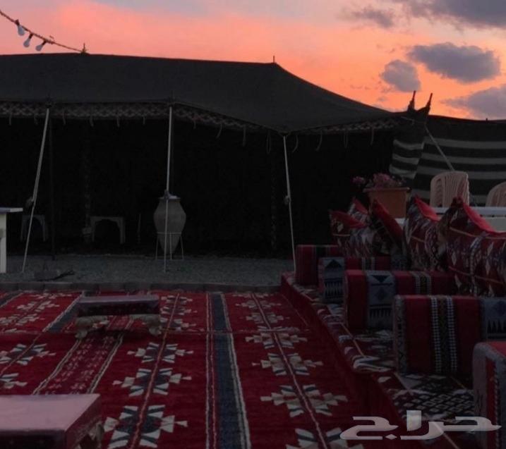 مخيم واستراحة نسيم الشمال