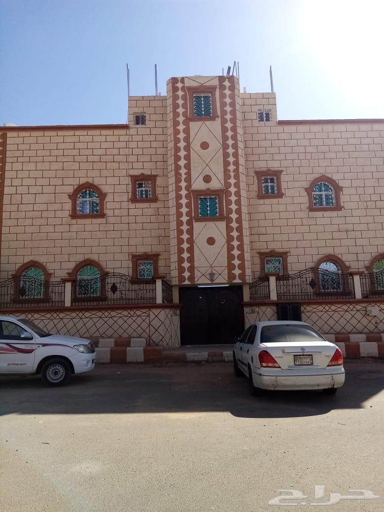 شقه بلاط للإيجار حي الملك عبدالله شرورة