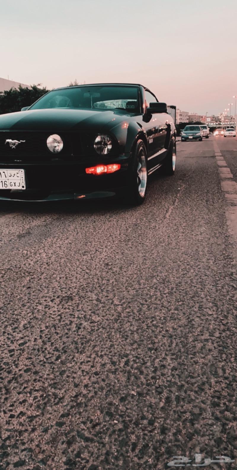 موستنج GT كالفرونيا سبيشل